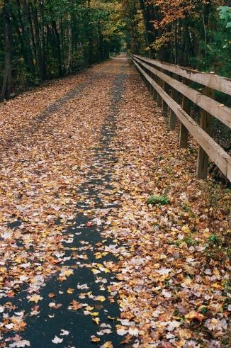 Freeman Trail, Which Runs Past Hart Pond