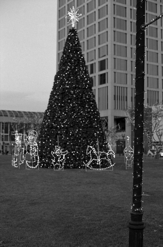 Christmas Tree Behind City Hall, City Square Bank Office Building In Background