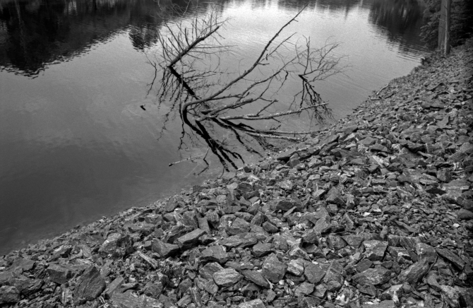 Reflections can look awesome in B&W.