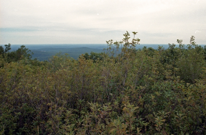 Part Of The View From Summit