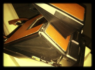 Side view. Polaroid LOVED bellows in the 60's, and early 70's.