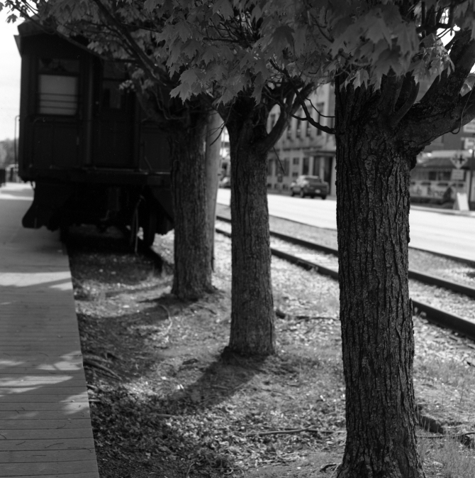 View of the Boston and Maine train from behind the trees.